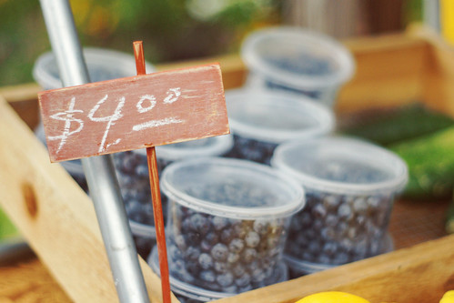 Blueberries @ the Farmer's Market | by Wayfaring Wanderer