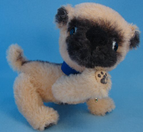 percy the pug percy the pug percy is a sweet little pugugly he is 5049