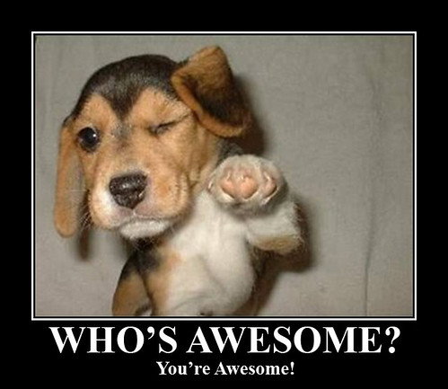 Amazing Meme: You're Awesome!