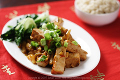 Sichuan Tofu with Garlic Sauce 2 | by domin0