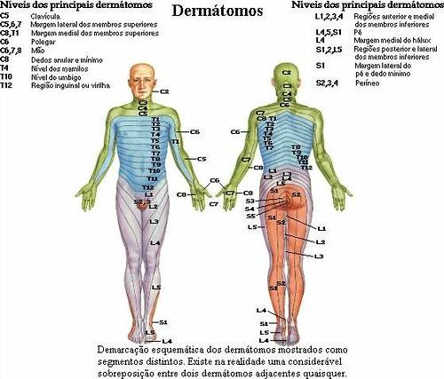 Porphyria cutanea tarda - Wikipedia