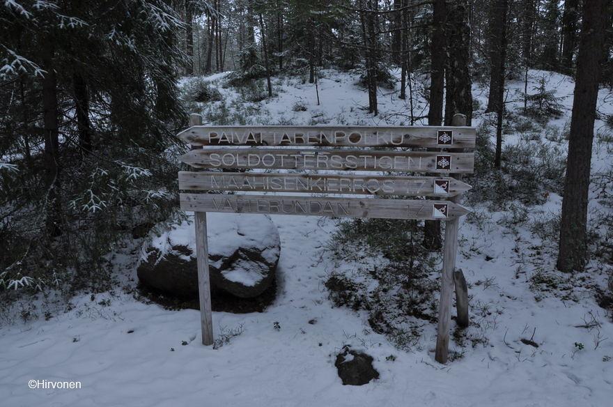 nuuksio-forest