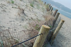 Fence Line | by kqedquest