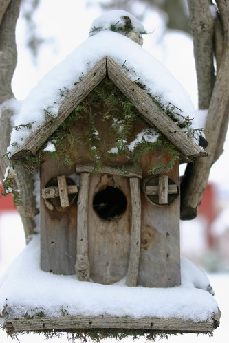Snow-covered Bird House | by Pictures by Ann