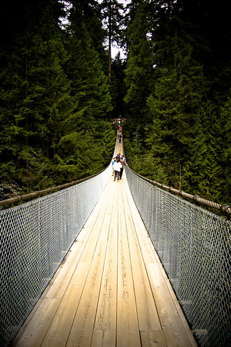 On The Suspension Bridge | by ★WaiWai★