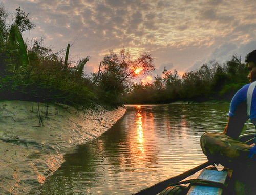Bangladesh's Sundarbans at dawn | by joiseyshowaa