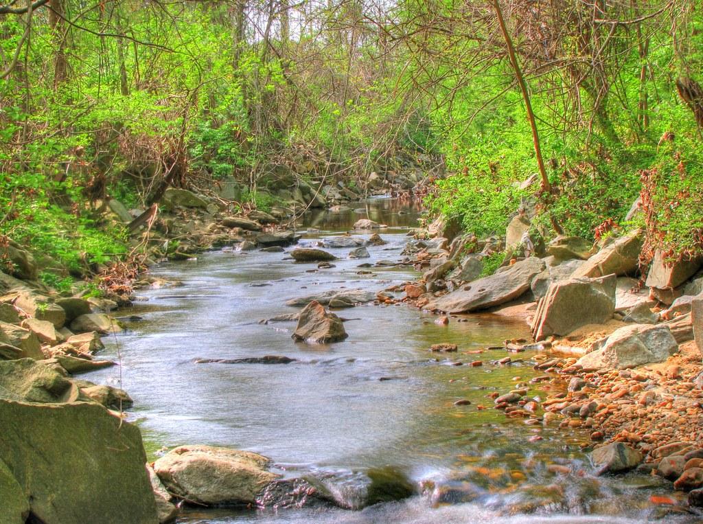 four mile run flowing through glencarlyn park
