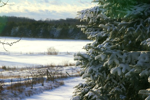 December snow in SE Michigan | by oakwood