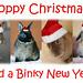 Bunny Christmas Card 2007