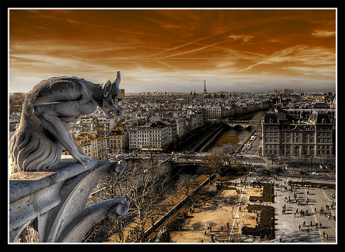 "from the top of the cathedral ""Notre Dame de Paris""... 