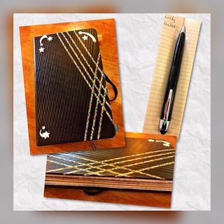 Livescribe 3 pen and Livescribe Moleskine journal