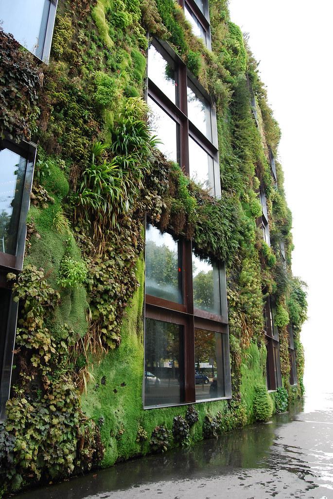 Living facade virenfeldt flickr for Tipos de muros verdes