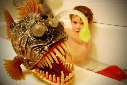 1 13 08 angler fish coolest bath toy ever beth for Angler fish toy