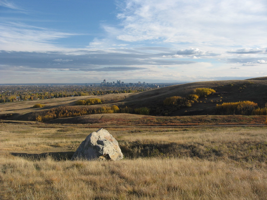 Rubbing Stone In Nose Hill Park Quot Bison Shed Their