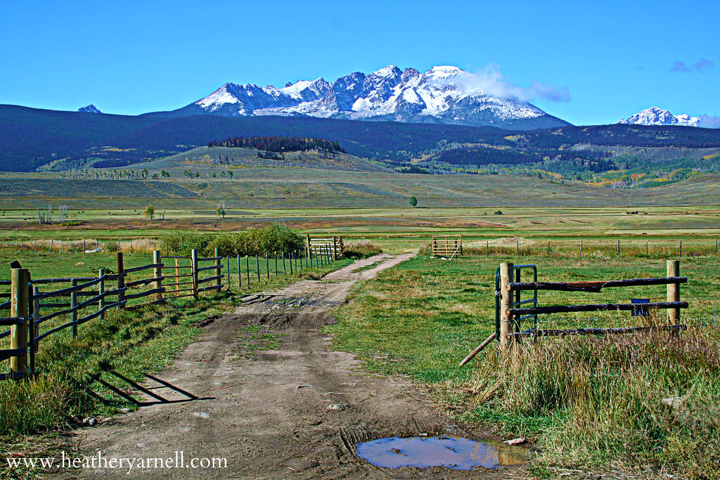 Colorado Mountain View Farm