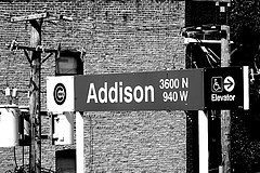 addison | by tracyellen1973