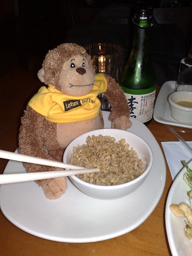 Monkey steals some rice and sake | by kmcgivney