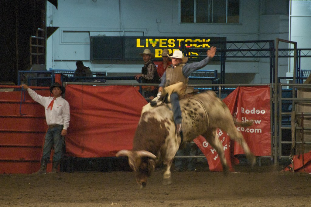 Cow palace rodeo coupons