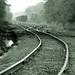 Train Tracks in Charlotte, NY