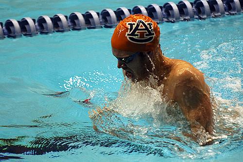 Auburn Swim Team Auburn University Swim Team Meet Scott Fillmer Flickr