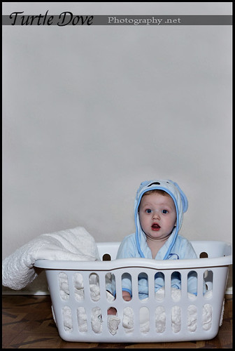 Laundry Day! | by Turtle Dove Photography