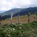 tower near Guajiquiro
