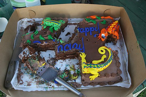 Lizard Cake Pan