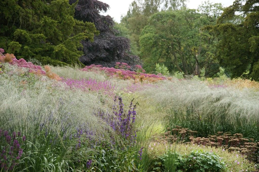 Trentham piet oudolf piet oudolf flickr for Landscapes in landscapes piet oudolf