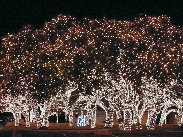 electric holiday lights