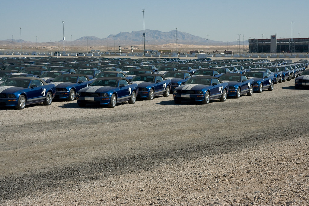 Blue Mustang Parking Only Ford Mustangs Ready For