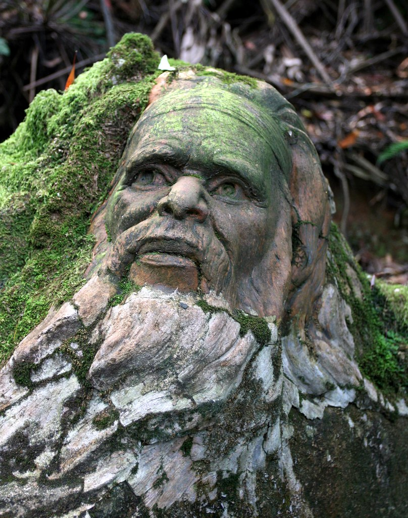 William ricketts sanctuary situated in the dandenongs