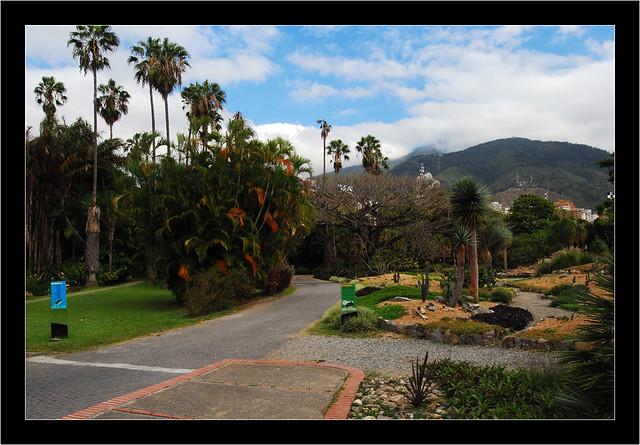 Entrada al jard n bot nico de caracas flickr photo for Costo entrada jardin botanico