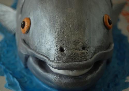 Coho Salmon Birthday Cake Fish Face With White Gums