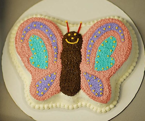 Butterfly Cake I Made This For Our Women S Ministry Open
