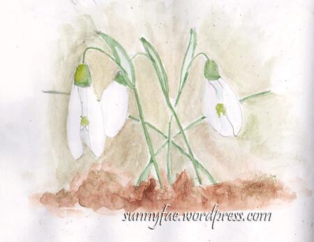 watercolour snowdrops sketch