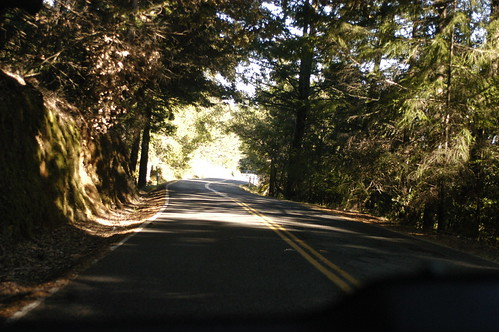 on the road, northern California | by shauna | glutenfreegirl