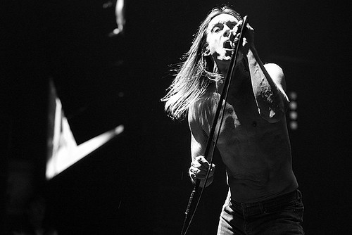 iggy pop | by aleksey.const