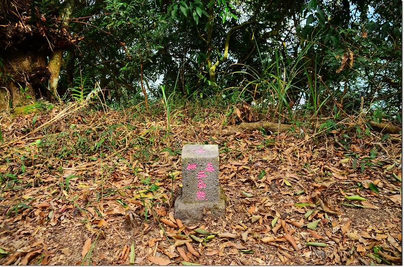 吐蛇流山西北峰山字森林三角點(Elev. 930 m) 1