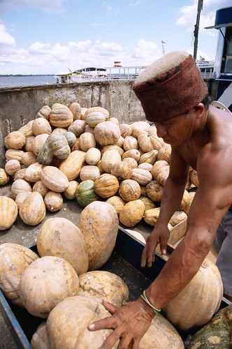 Day workers unload squash | by World Bank Photo Collection