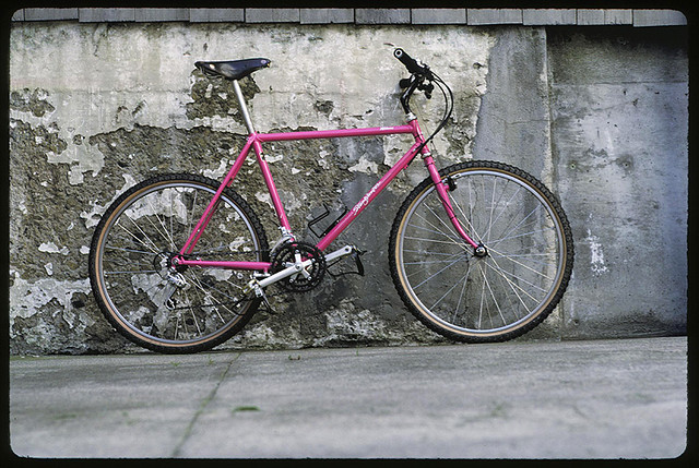 Pink Team Stumpjumper