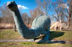 Spreepark: Brontosaurus, Stegosaurus And A Missing Leg