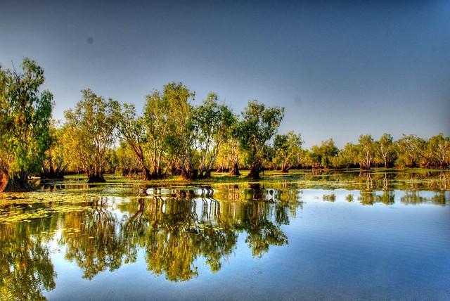 Australia Yellow Waters Billabong Pedro Lopez Flickr