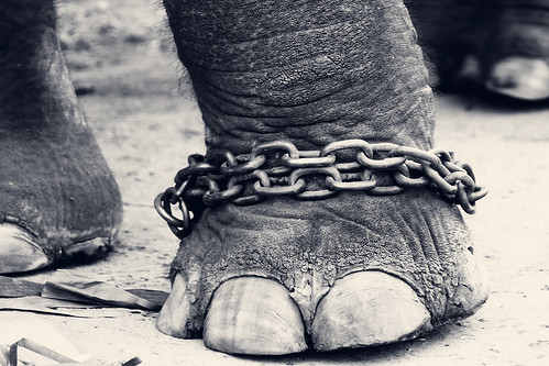CHAINED!!! | by VinothChandar