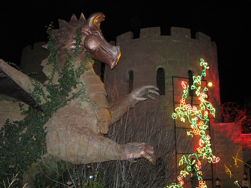 The Dragon--River of Lights--5 Dec 07 304 | by sburke2478