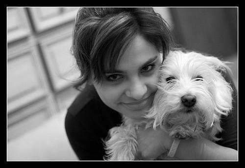 Forever Friends Dog Training Ottawa