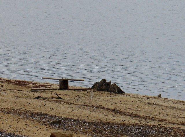 Santee cooper state park lake marion very low south caroli for Lake marion fishing report