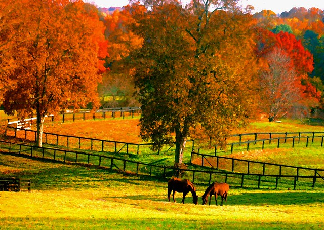 Two horses watercolor fall flickr photo sharing - Beautiful panoramic view house to take full advantage of the scenery ...