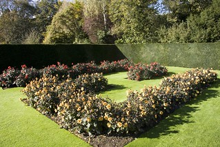 formal garden@Anglesey Abbey, Gardens & Lode Mill | by CokeeOrg