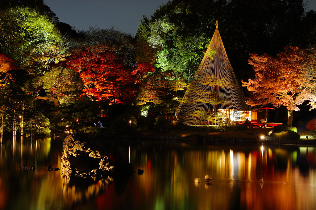 Japanese garden at night Rikugien Tokyo Yumi Flickr
