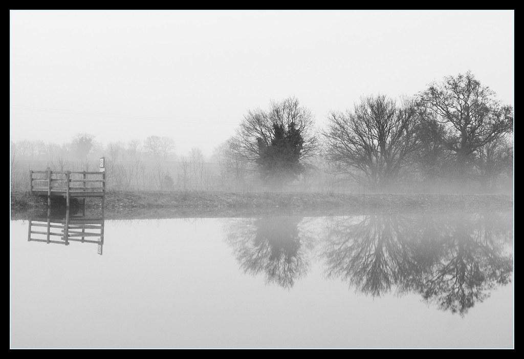 Black And White Misty : Black and white misty trees charlie beldon flickr
